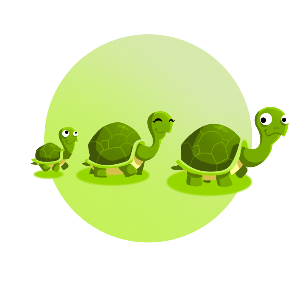 Image 5 - Famille Tortue